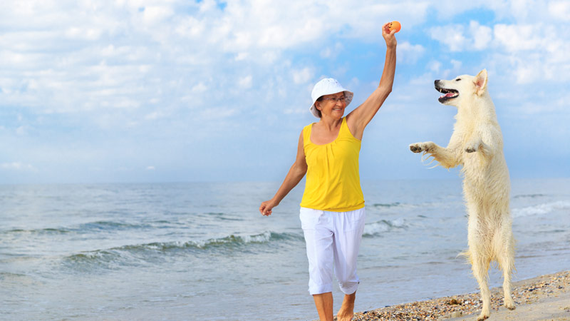 Pets: The Secret Remedy Of Loneliness For Seniors